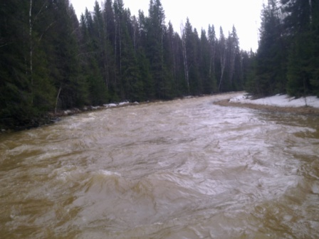 Сплав по реке Вижай